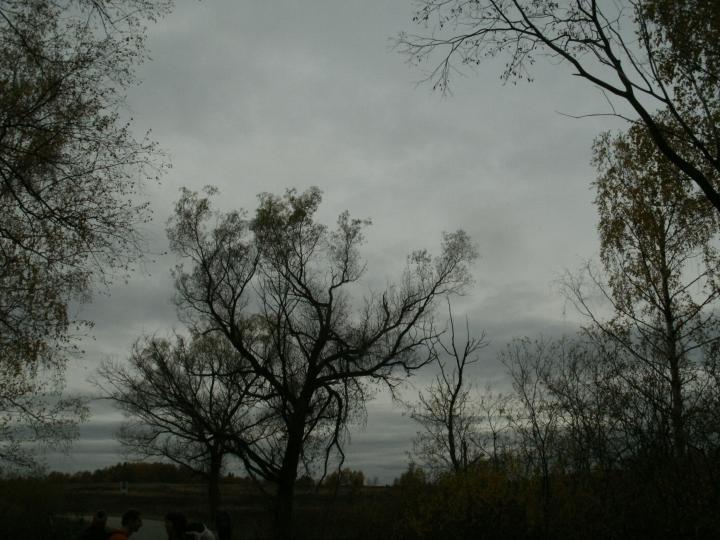 Отчёт.  Фото 9 из 159 в Симпатопутешествие 8-9.10.11 морды.  0 comments.  Сделать фотографией профиля.